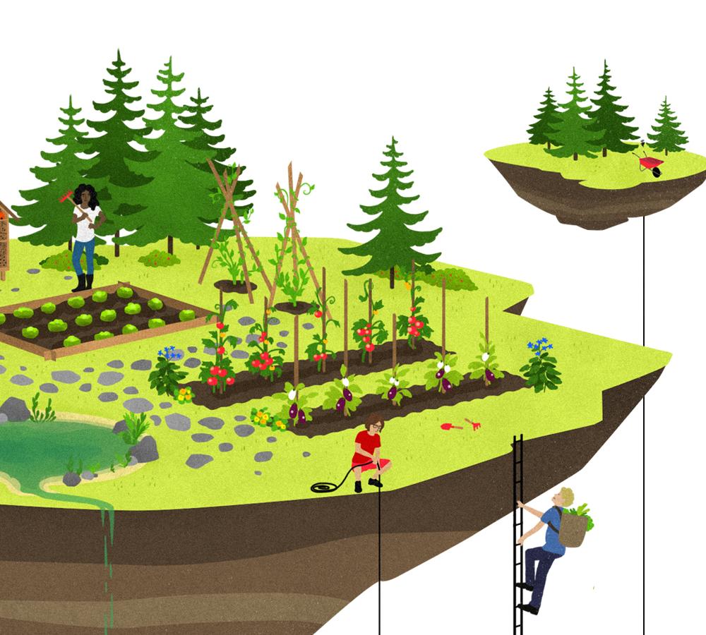 Je démarre un jardin bio